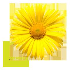 03-portfolio